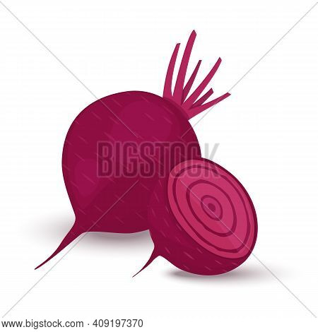 Red Beetroot Whole And Cut Isolated On White Background. Vector Illustration Flat Design