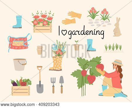 A Set Of Gardening Tools, Equipment, And Clothing. The Girl Collects Strawberries. Garden Supplies,