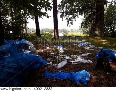Trash In Nature, Forest Pollution, Plastic Trash In Deciduous Forest. There Is A Lot Of Garbage In T