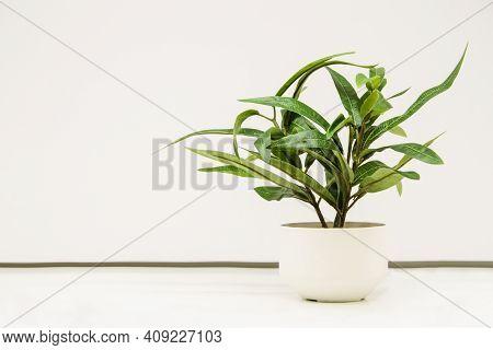 Artificial Plant In A White Decorative Ceramic Pot On A White Background. Use Of Artificial Plants I