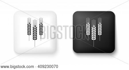 Black And White Cereals Icon With Rice, Wheat, Corn, Oats, Rye, Barley Icon Isolated On White Backgr
