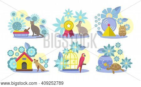 Collection Of Domestic Animals, Care Accessories. Cute Cat, Dog, Rabbit, Hamster, Parrot, Tortoise A