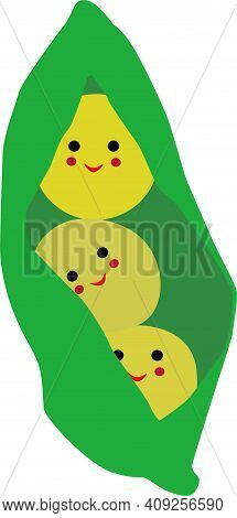 Green Pea Pod With Peas And Sweet, Vector Illustration, Isolate On White Background