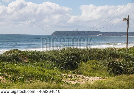 Dune Covered With Vegetation And Bluff In Background