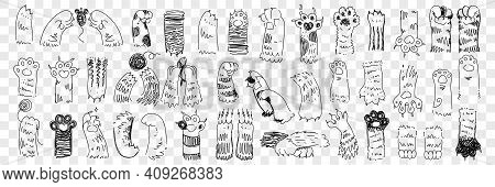 Animal Paws With Claws Doodle Set. Collection Of Hand Drawn Paws Of Cats And Dogs Of Various Shape W