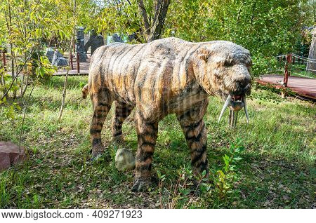 Russia, Moscow - September 29, 2018: Life-size Ice Age Prehistoric Extinct Saber-toothed Tiger Outdo