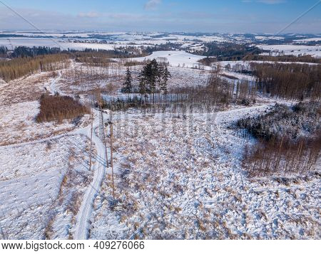 Aerial View Of Spruce Tree In Deforested Landscape,natural Calamity Bark Beetle Attack, Winter Theme