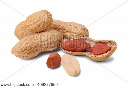 Roasted Peanut In Shell And Peeled Peanuts Isolated On White Background. Close Up.