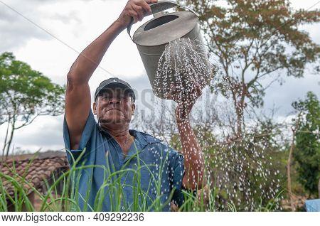 Rivas, Nicaragua. 07-15-2016. Farmer Watering The Vegetable In An Rural Areas Of Nicaragua. Families