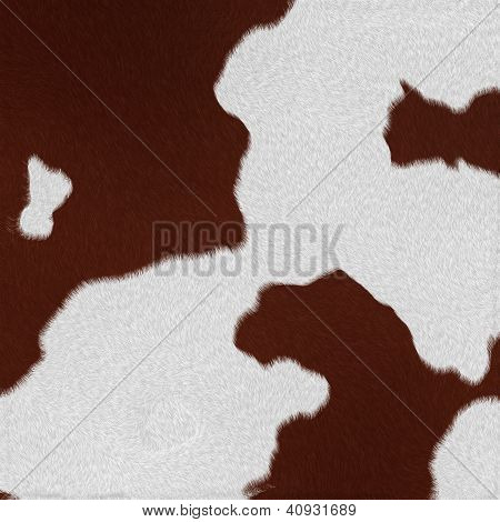 Dairy Cow Fur (skin) Background Or Texture