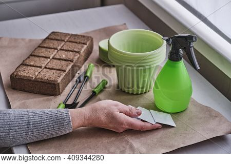 The Older Female Hand On The Table Holding Paper Bags Of Seeds For The Home Vegetable Garden Against