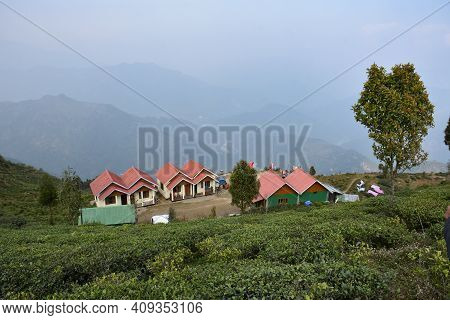 Home Stay With Organic Tea Plantation In Darjeeling With Blissful And Scintillating Himalayan View