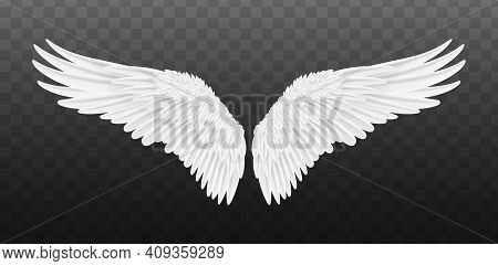 Pair Of Beautiful White Angel Wings Isolated. Vector Concept White Cute Feathered Wing Animal On A T
