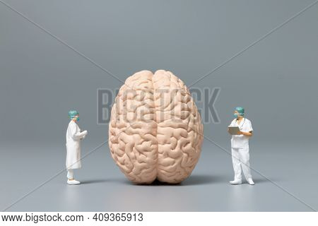 Miniature People Doctor And Nurse Observing And Discussing About Human Brain, Science And Medical Co