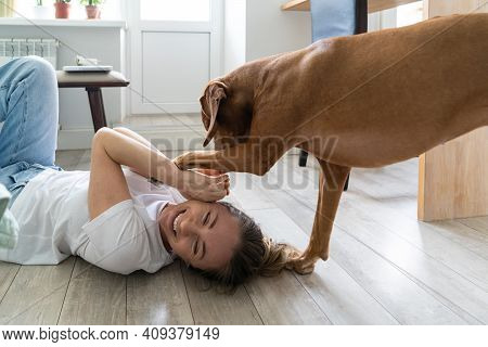 Happy Woman Owner Playing With Her Lovely Vizsla Dog, Hugging, Lying On The Floor At Home. Female Ow