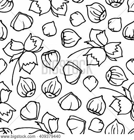 Hazelnut Seamless Pattern. Hand Drawn Vector Nut Backdrop. For Wallpapers, Wrapping Papers, Restaura