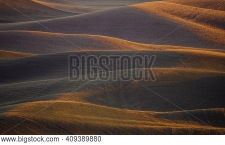 Rolling Hills Wheat Field In Palouse, Eastern Washington