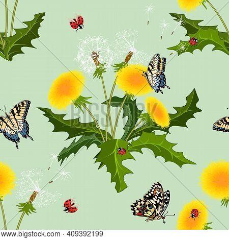 Dandelions And Butterflies In A Pattern.seamless Pattern With Bouquets Of Dandelions And Butterflies