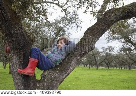 Child Boy Sleeping Over Tree After Intense Journey In Nature. Children Discover Nature Concept