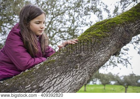 Child Girl Feeling Tree Moss Over Branch. Children Discovering Textures In Nature. Selective Focus