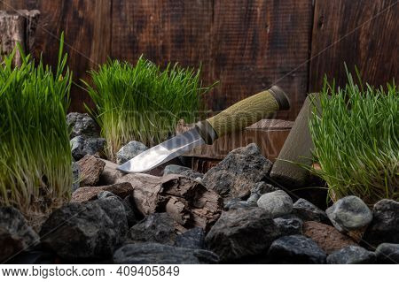 A Knife With A Large Shiny Blade On The Stump. Knife On Stumps And Stones. Wooden Background.