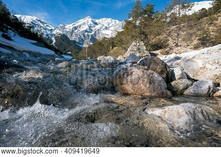 Clear Splashing Mountain River Flowing Over Rocks Through Evergreen Forest With Last Snow, Mieminger