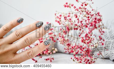 Hand In Sweater And Pink Flowers With Zebra Animal Printed Nails. Female Manicure. Glamorous Beautif