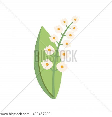 Snowdrop Flower Nature Illustration, Banner, Card Design. Spring. Isolated On White Background.