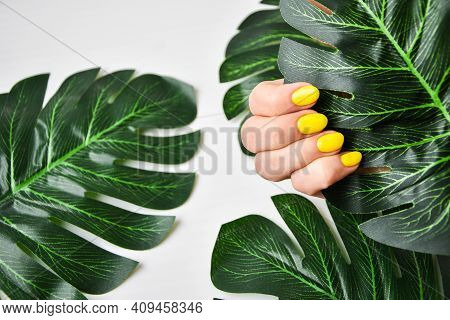 Female Hand With Yellow Nail Design. Yellow Nail Polish Manicure. Female Hand Hold Green Leaf On Gre