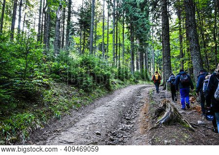 Back View Of People Hiking The Mountains. Group Of People Hiking Forward The Pass. Group Of Hikers W