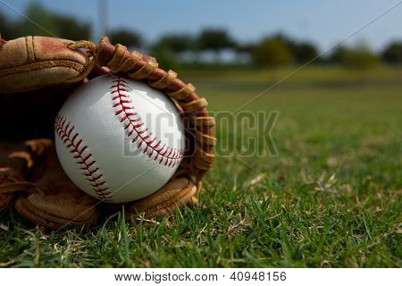 New Baseball in a Glove in the Outfield Grass