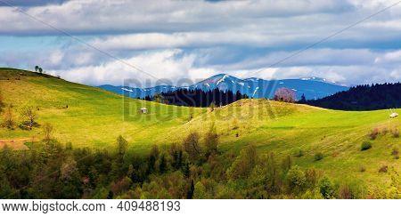 Rural Fields On Rolling Hills In Springtime. Borzhava Mountain Ridge In The Distance. Carpathian Lan
