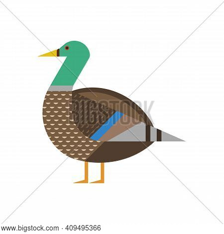 Mallard Bird Geometric Icon In Flat Design