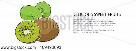 Kiwifruit Banner, Tropical Fruit Isolated On White Background, Vector Illustration