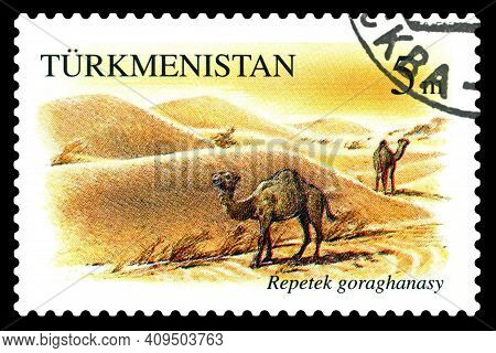 Stavropol, Russia - Februar  23. 2021: A Stamp Printed In Turkmenistan Shows Dromedary, Repetek Rese