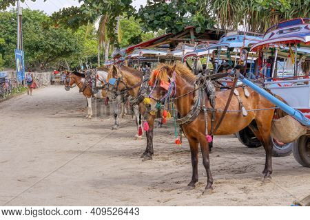 Gili Air Island In The Indian Ocean. 03.01.2017 Pony Taxi On The Island. Private Transport. On The I