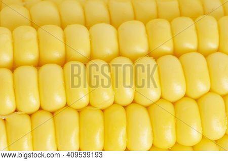 Corn Texture. Yellow Corns As Background Corn