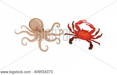 Crab And Octopus As Seafood And Marine Delicacy Vector Set