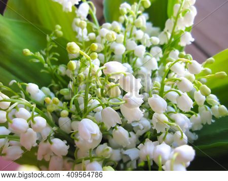 Bouquet Of Spring White Flowers Lilies Of The Valley, Congratulations On The Holiday, Mother's Day,