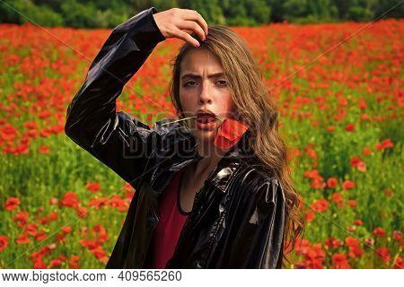 Beauty Spring Poppy Field. Woman With Poppy Flower In Red Lips. Spring Woman With Red Flower In Mout