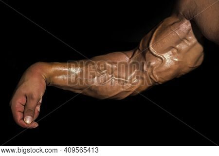 Veins And Tendons In The Arm. Arm With Muscles, Biceps, Triceps And Veins On Black Background. Muscu
