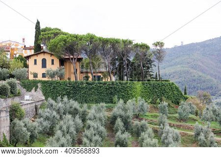 Tuscan Hills With Villa, Olive Threes In The Garden. Old Villa In The Foreground In The Village Of C