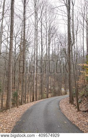 Winding, Hilly Asphalt Road Leads Down Through Bare Trees In Winter.