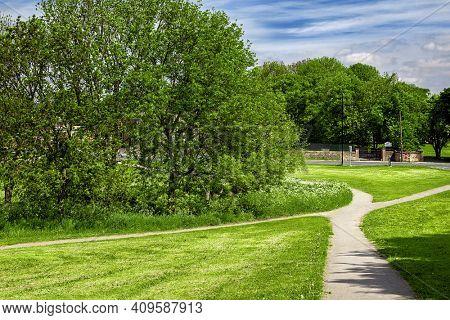 Green park in the spring UK