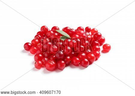 Pile Of Fresh Ripe Cranberries On White Background