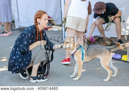 Nikolaev, Ukraine- August 15, 2020: Volunteer Exhibition Of Stray Dogs. Photographer Girl Makes A Pi