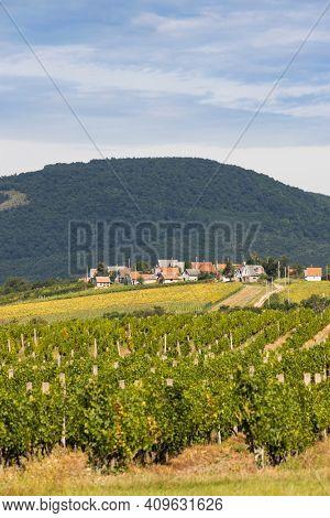Wine cellars in Bukkzserc, Northern Hungary