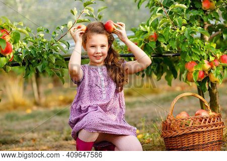 Portrait Of Little Schoool Girl In Colorful Clothes And Rubber Gum Boots With Red Apples In Organic