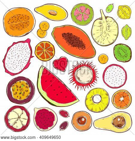 Hand Drawn Colored Exotic Products Set With Natural Organic Fruits And Berries Isolated Vector Illus