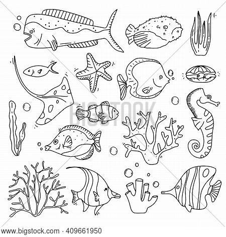 Sea Life Doodle Set. Fisches And Corals Collection Hand Drown. Underwater Elements In Cute Style. Ve